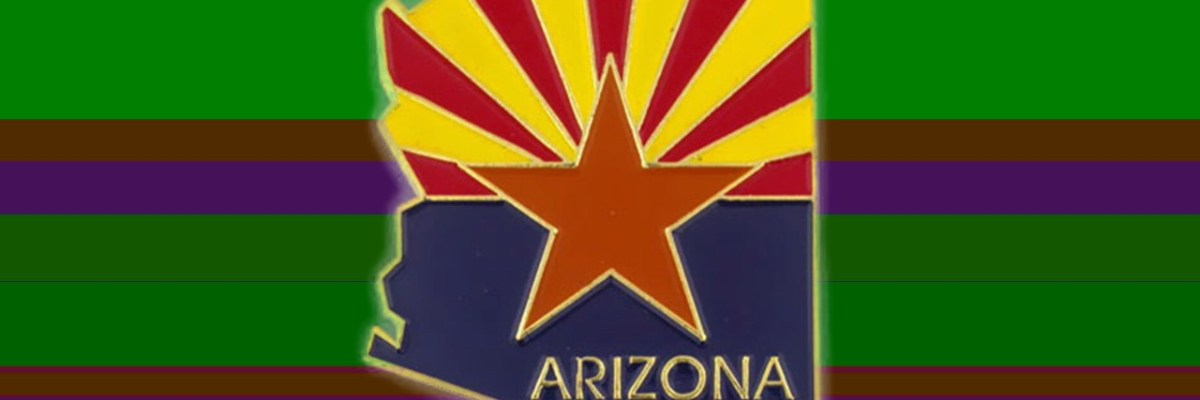 WATCH LIVE! The Arizona Election Audit